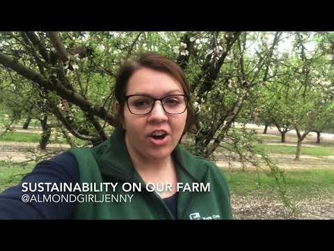 Sustainability on our Almond Farm