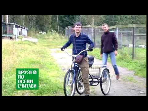 ПИТЕР 39 трехколесный велосипед