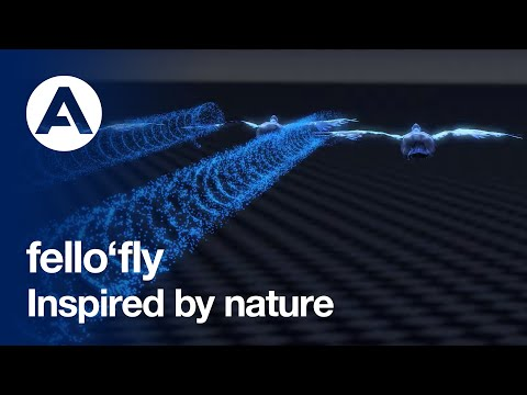 fello'fly: A flight demonstrator inspired by nature