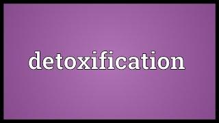 Detoxification Meaning