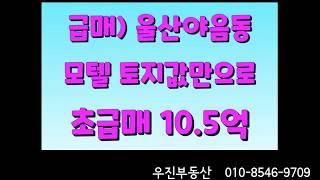 급급매)) 울산야음동 모텔 객실21개 10.5억