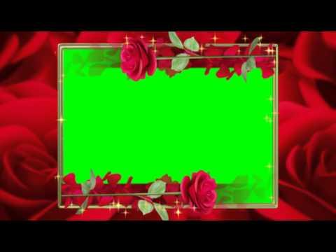 Футаж Рамка с красными розами на экране хромакей