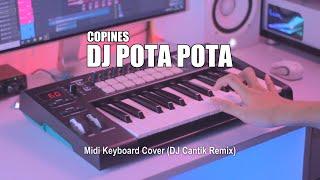 Download Mp3 DJ Pota Pota Copines Tik Tok Remix Terbaru 2020