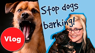 Nicole and Albert are here to tell you how to stop your dog barking...