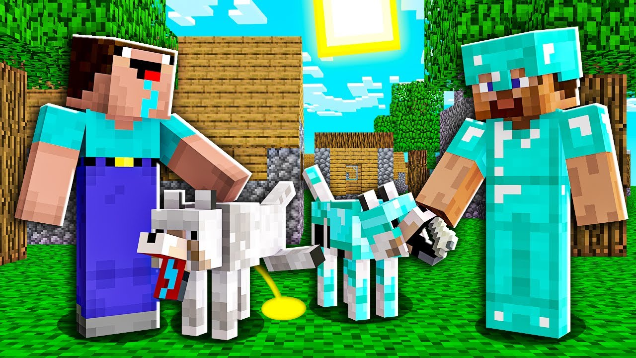 Minecraft NOOB vs PRO: HOW NOOB AND PRO GOT DOGS IN VILLAGE! 100% TROLLING PET CAT TRAINING