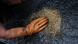 Жители Баунтовского района требуют разрешить в республике свободную добычу золота