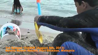 1st Syawal 1434AH (Aug 8, 2013) at PD Selesa Resort Beach video 3 of 5