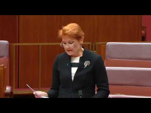 Pauline Hanson Responds to George Brandis' Burqa Attack
