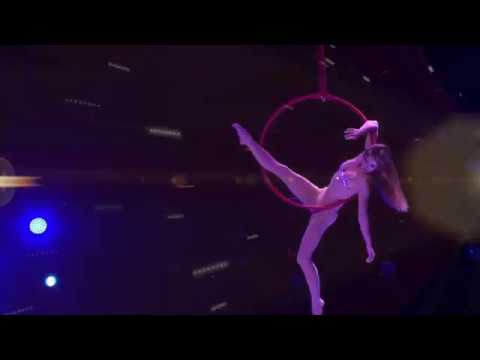 Le Cirque with World's Top Performers - Alis