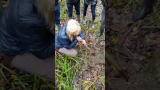 Охота на трюфеля(, 2016-12-15T13:19:37.000Z)