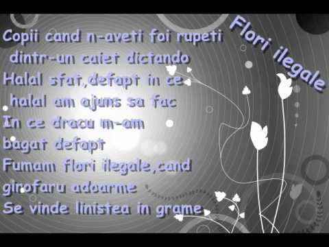 Guess Who-Flori Ilegale [ Lyrics ]