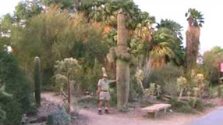 The Old Desert Naturalist talks about plants from the Colorado and Sonoran Desert