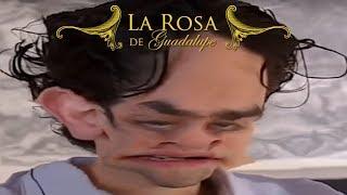 LA ROSA DE LOS CLASISTAS II