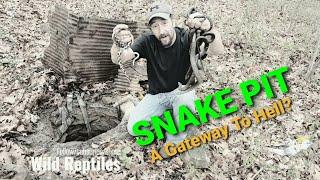 Snake hibernaculum (Filled with snakes)