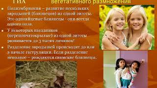 Размножение животных #био100