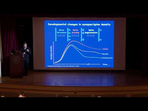 Mu-ming Poo, Chinese Academy of Sciences: Synaptic plasticity and brain-inspired machine learning