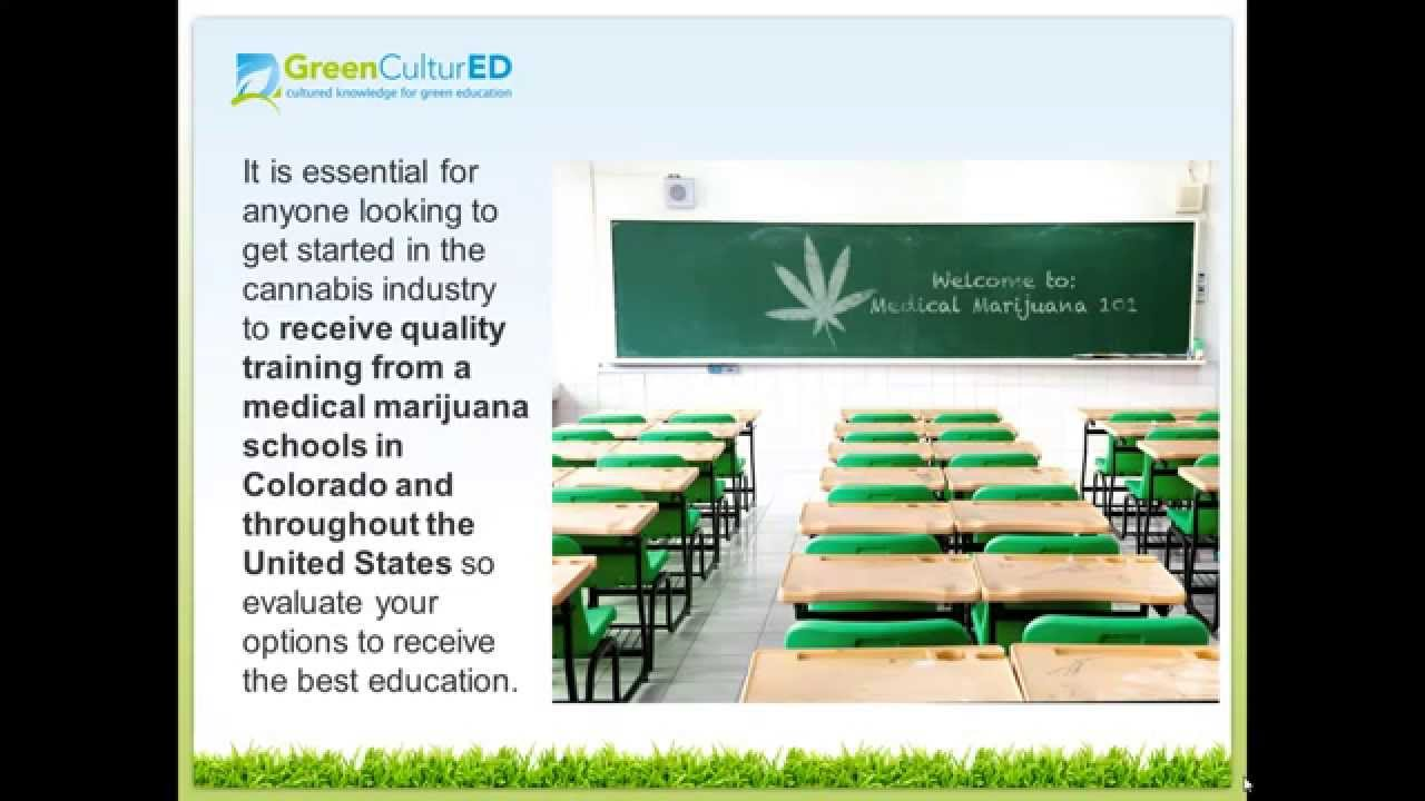 Medical Marijuana Schools In Colorado For Budtenders Youtube