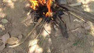 Solo bushcraft | Cook and Eat Fish