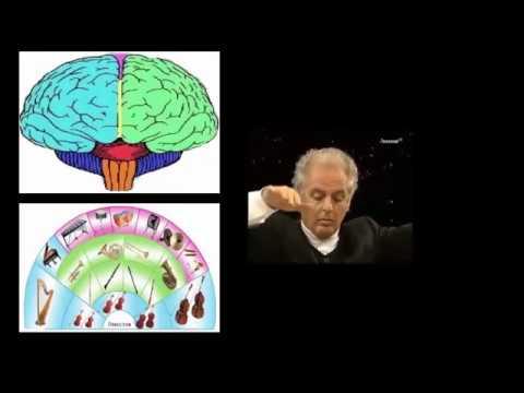 #-001-eeg,-la-orquesta-neuronal---neurofisiología-clínica