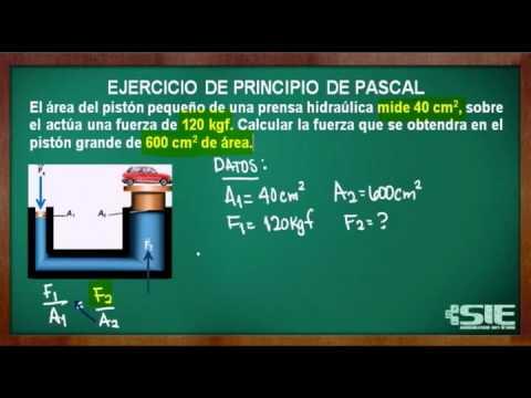 RESUELTOS DE PRINCIPIO PDF EJERCICIOS ARQUIMEDES