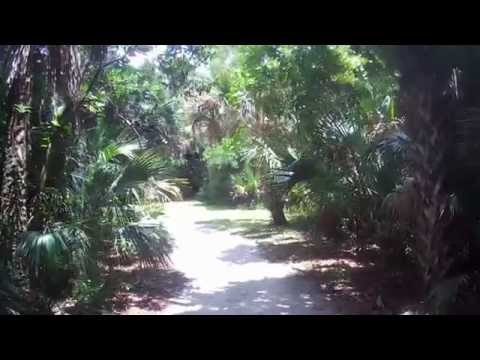 Walking Around Caloosahatchee Regional Park in Alva, Florida