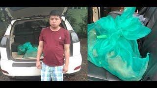 រំដោះស្វារស់១៣ក្បាលពីមុខសញ្ញាឈ្មួញម្នាក់|Khmer News Sharing