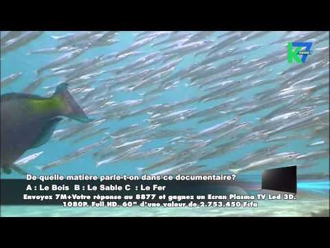 7 Merveilles Aquatique du 20/05/2015 : Dans les déserts de la mer