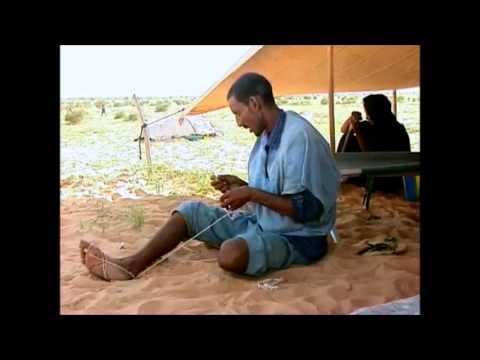 Tuareg Nomads