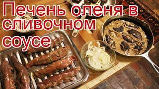 Рецепты из оленя - как приготовить оленину пошаговый рецепт - Печень оленя в сливочном соусе