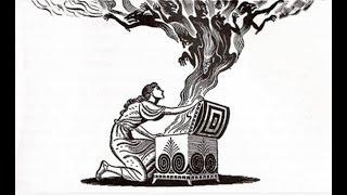 Загадка ящика Пандоры