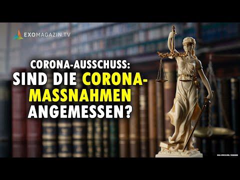 Corona-Ausschuss: Sind die Maßnahmen angemessen? Rechtsanwältin Viviane Fischer im Interview