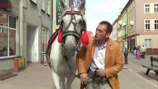 Bogdan Trojanek & Terne Roma - Oj Macijom (Oficjalny teledysk)