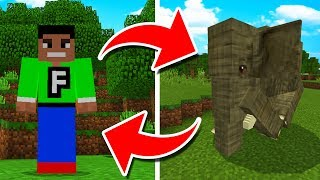 HOW TO TURN INTO ANY MOB in Minecraft Pocket Edition!