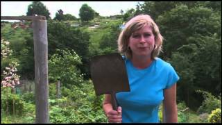 TOP TOOL TIPS   The Allotment