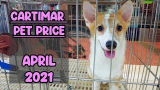 CARTIMAR Pet Price APRIL 2021 LATEST Update (Dalmatian,Golden Retriever,Corgi,French Bulldog &MORE)
