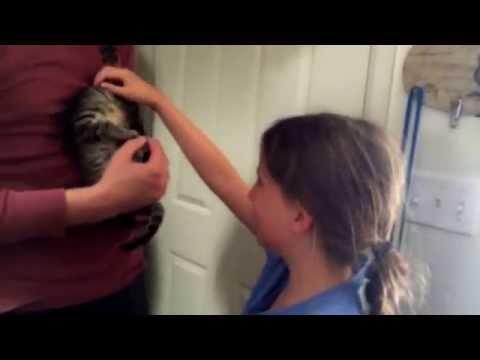 Little girl cries on getting her kitten!