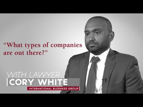 Ask A Lawyer: What types of companies are out there?