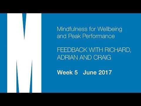 Feedback from Richard, Adrian and Craig - Week 5 - June 2017