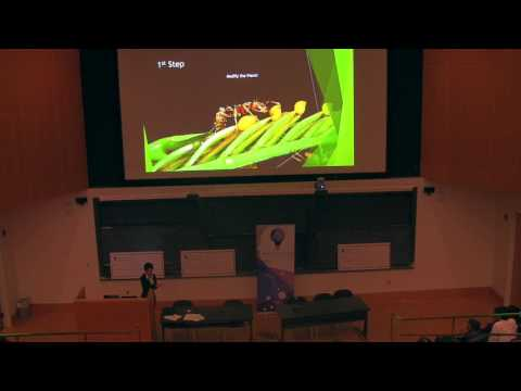 Envision Entrepreneurship: Farming with Ant Colonies with Elisa Vera