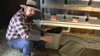 Diy Fodder System Cheap Livestock Winter Food