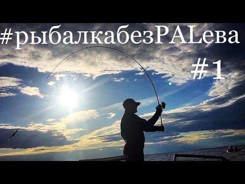 Рыбалка на Рыбинском