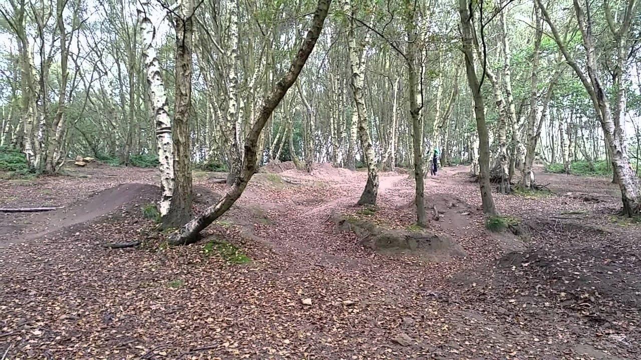 Adel woods