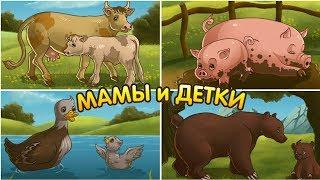 Домашние животные мамы и их детеныши. Видео для детей