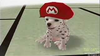TNN GAMES - Nintendogs  Dalmatian and Friends - Nintendo DS - tnngames.pt