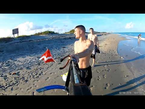 South Florida Spearfishing Compilation 2018