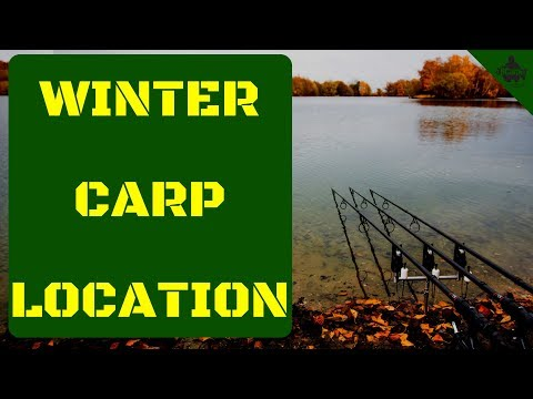 WINTER CARP LOCATION 😀