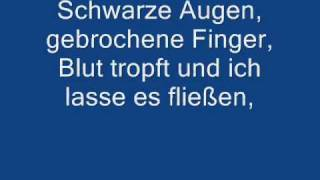 Rise Against Behind closed doors german lyrics