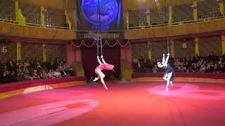 Гимнастки на ремнях - Владлена Масленникова и Ирина Рогозина