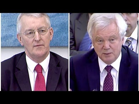 Lords will be DEFEATED: David Davis insists leaving Customs Union position will be upheld