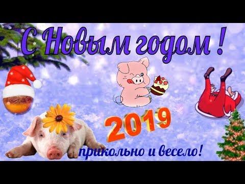 Новый год прикольное поздравление с новым Годом 2019 видео открытка в новый год - Лучшие видео поздравления [в HD качестве]